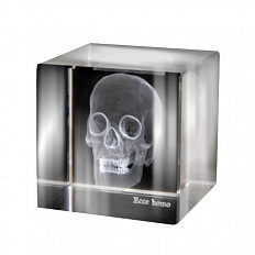 Аксессуар Ateliers C&S Davoy Skull 3D Large  OD822/1L