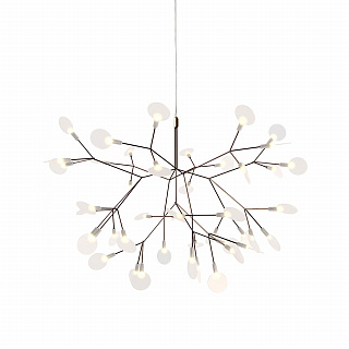 Heracleum II S copper