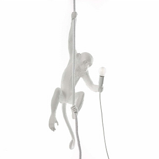 Monkey Lamp Outdoor Ceiling